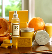 Soaps and body care products to support your Italian Beauty Care business to business, cosmetics and skin care products... the most Italian fashion, fine and high quality products for a perfect Face and Body Italian TREATMENTS, creams, perfumes, oils and made in Italy to the USA natural cosmetics to the cosmetics worldwide distribution market USA beauty care cosmetics manufacturing, skin care wholesale, body care cosmetics suppliers and industrial cosmetics vendors to increase your worldwide cosmetics business...